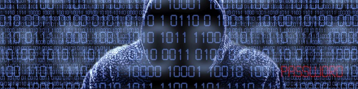 Hacker in Cyber Space